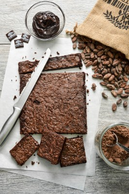 Tegral Cacao-Trace Clean Label Brownie Mix