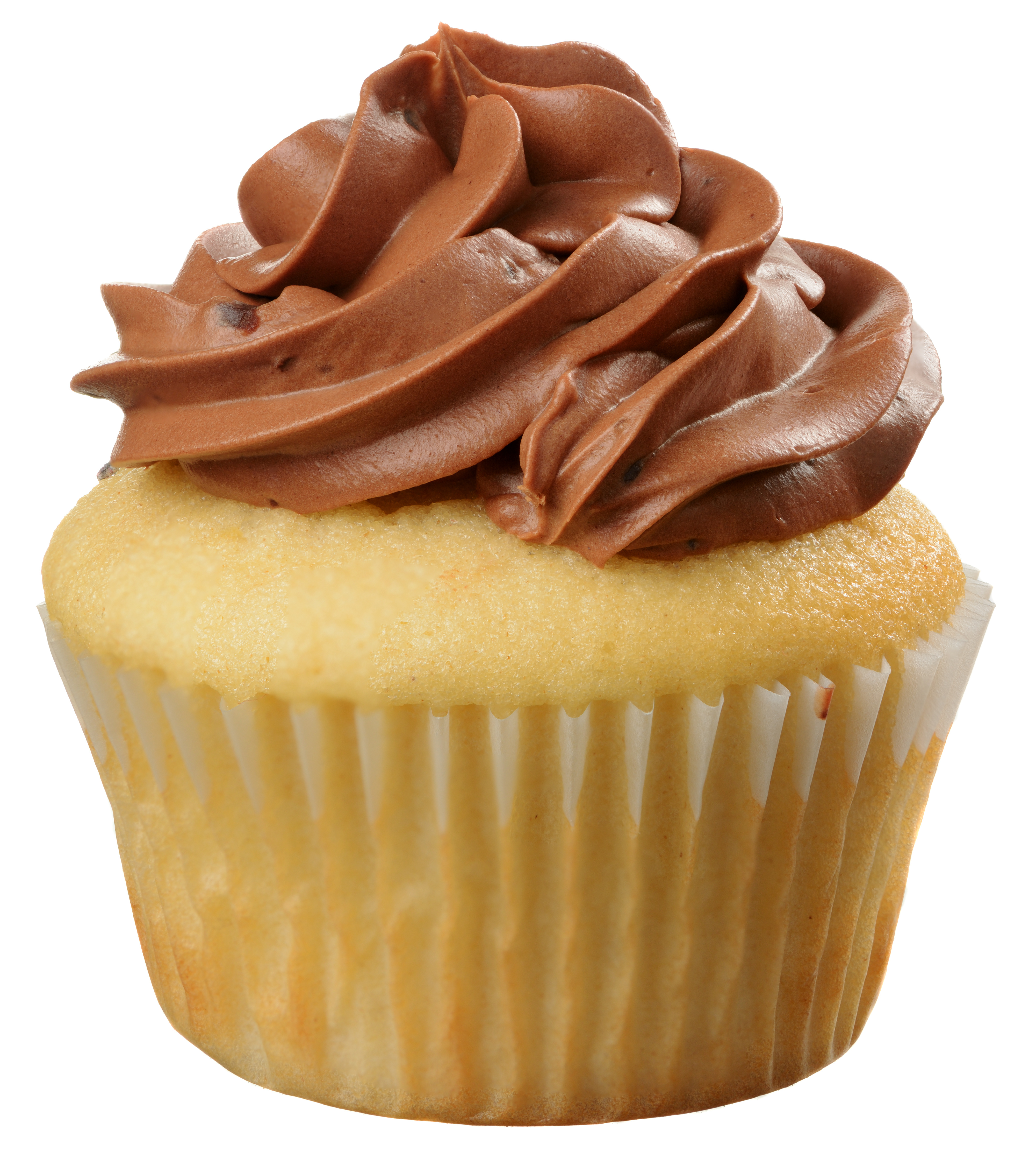 Delicious Marble Cupcake with Chocolate Swirled Frosting Isolated